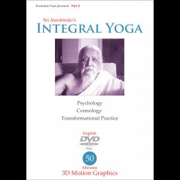 Integral Yoga – Evolution Fast Forward II (Video)